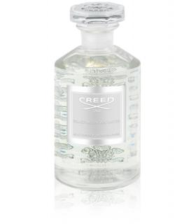 Silver Mountain Water Millésime Eau de Parfum Flacon 250ml de Creed