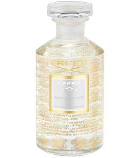 Silver Mountain Water Millésime Eau de Parfum Flacon 500ml de Creed